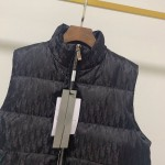 Replica Dior Oblique Down Vest