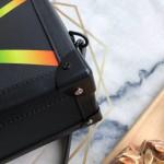 Replica LV Soft Trunk Taiga leather